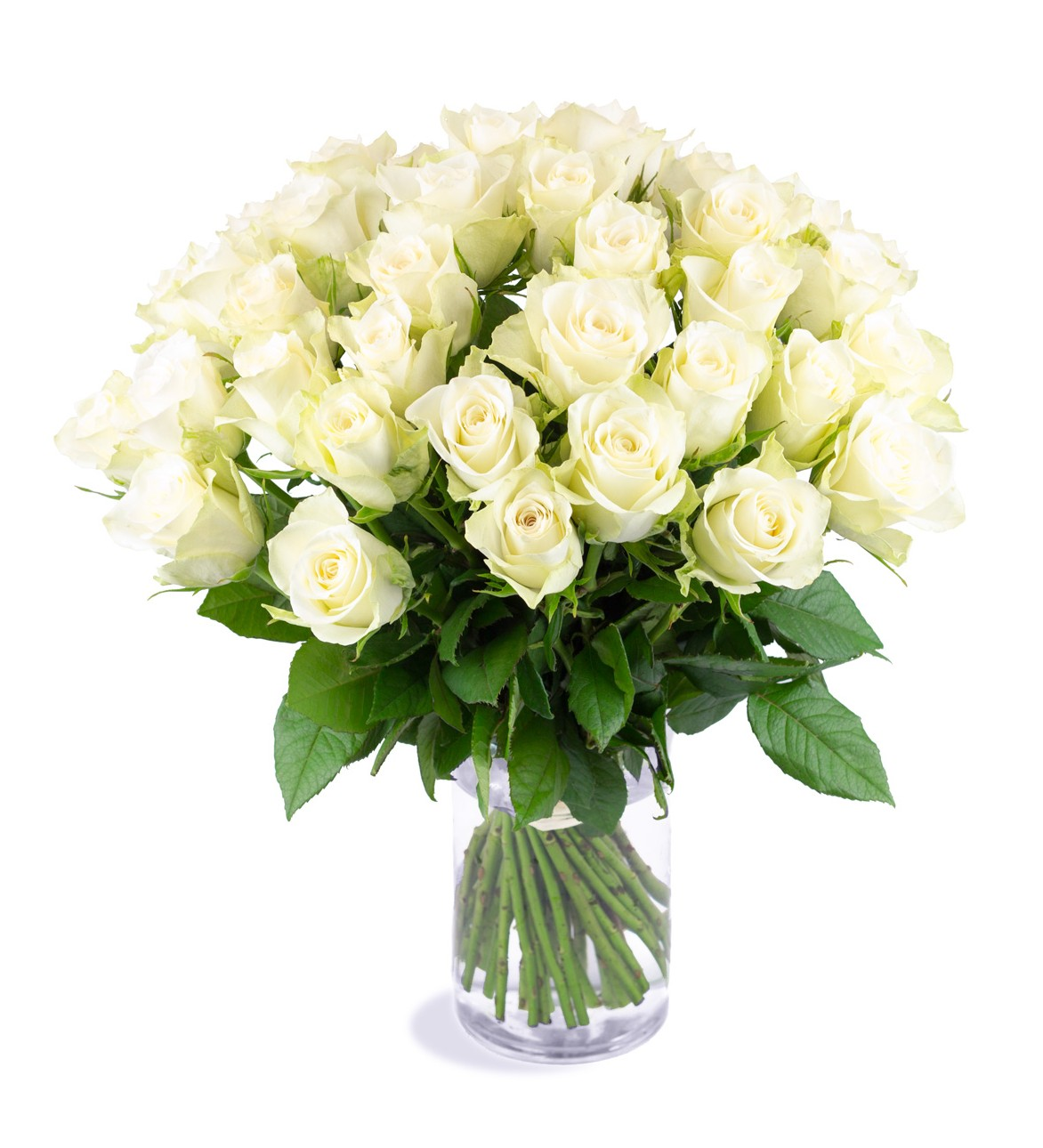 Roses blanches villa florale for Bouquet de roses blanches
