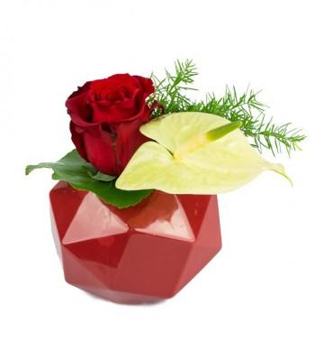 Petite composition avec rose rouge