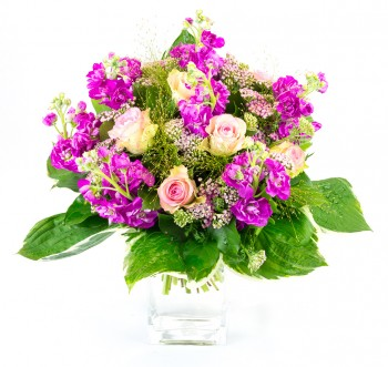 Le Purple, Bouquet de giroflées violettes et roses roses
