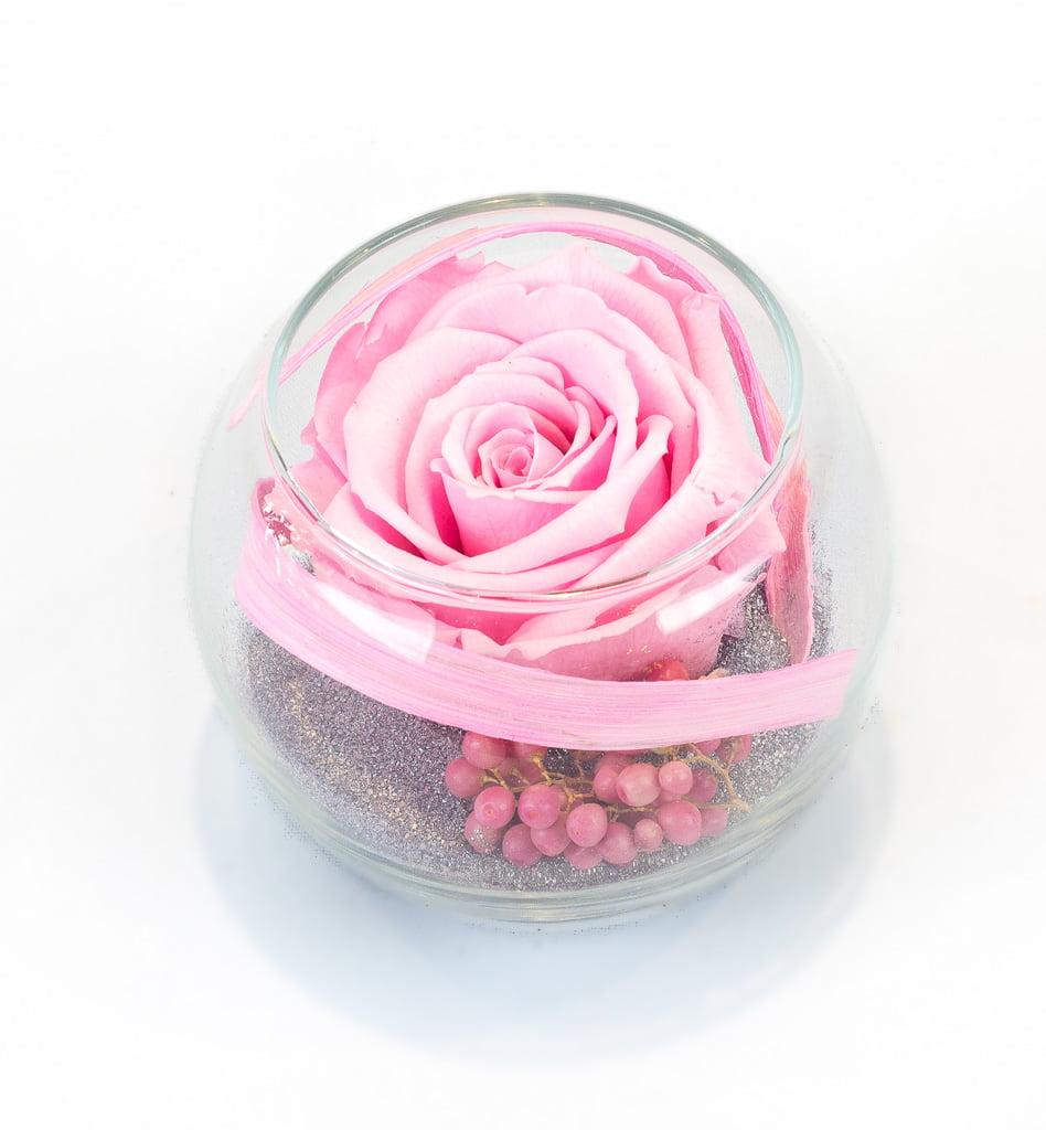 l 39 ternel rose rose ternelle rose dans petite verrerie. Black Bedroom Furniture Sets. Home Design Ideas
