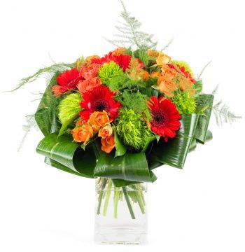 Le Poétique - Germinis rouges et roses oranges