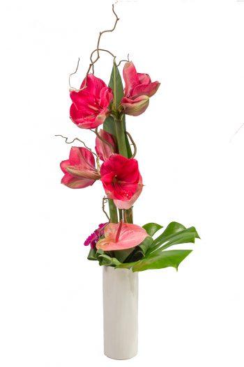 bouquet hauteur avec amaryllis roses, anthuriums roses, wanda, feuillage