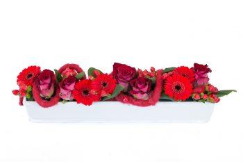 Gourmandise, composition avec roses rouges et germinis rouges