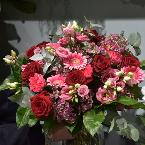 GOURMANDISE GERMINI ROSE OEILLET